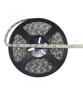 Ruban LED 12V/14.4W-5m-IP65...
