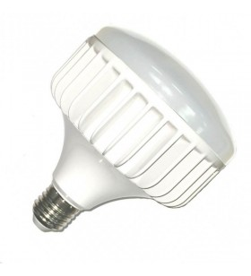 Ampoule LED cloche - 40W -...
